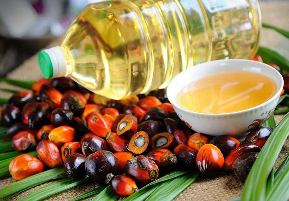 6 мифов о пальмовом масле